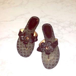 Black Coach Flower Designer  Sandals